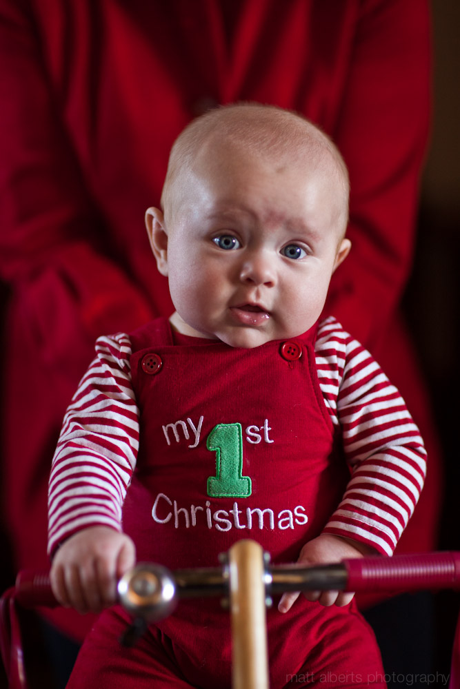 Baby Bruin's First Christmas